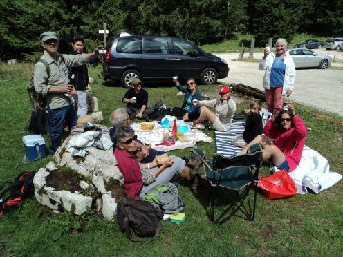 Plibonigita pikniko en la pasejo limŝtono de leonoj